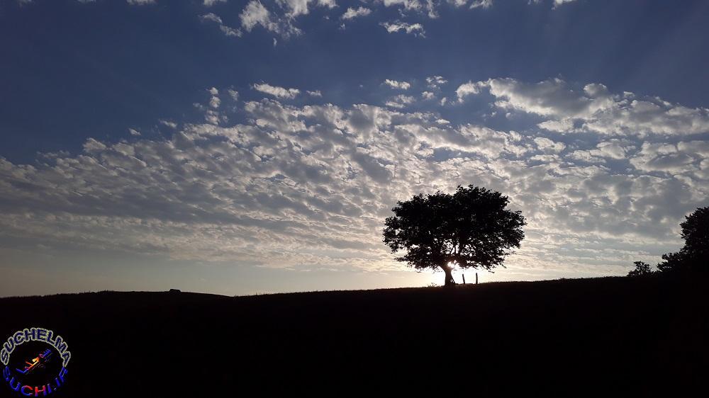 تصاویری از بهار و تابستان 98 روستای سوچلما
